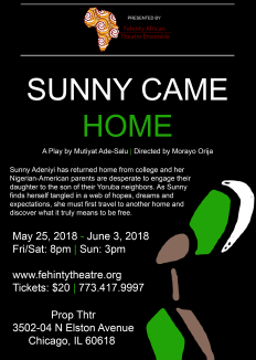 Sunny Came Home Flyer