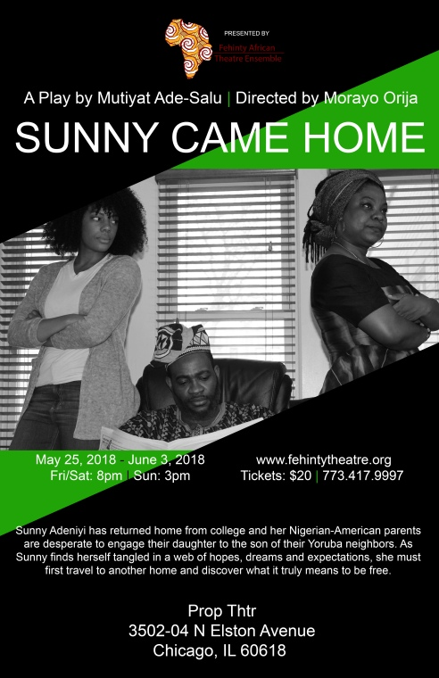 Sunny Came Home Poster